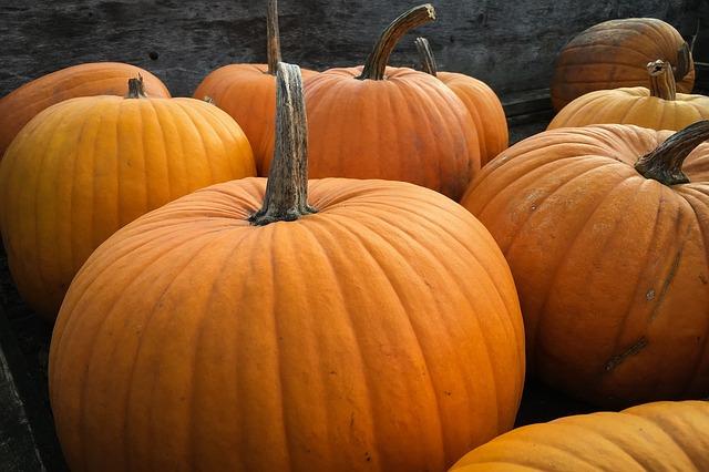 pumpkins-984207_640