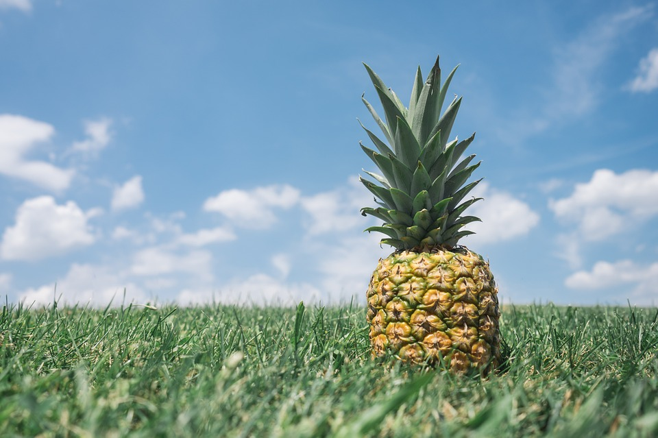 pineapple-867245_960_720