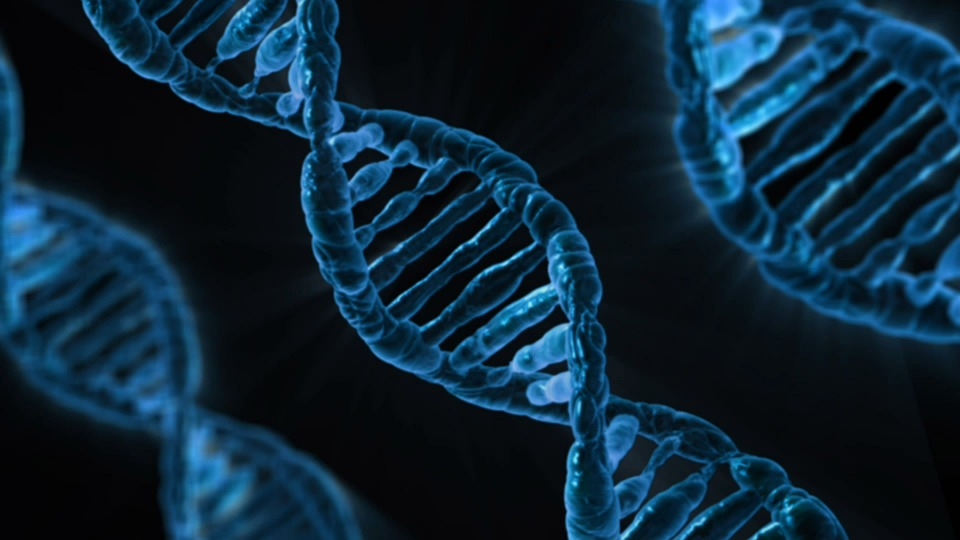 Could human gene therapy be the next cancer cure?