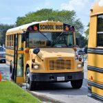 school buses 2801134 960 720