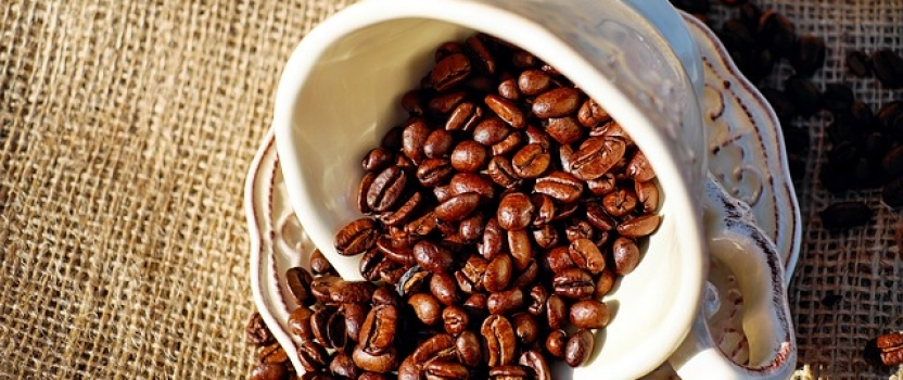Gloria Jean's Coffee Set to Expand its Franchise