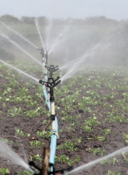 An Innovative Irrigation Project to Help Farmers in Alabama